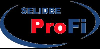 Selidbe Profi--Profesionalne selidbe za Vas